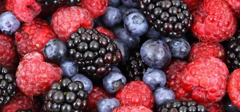 Şeker hastalığına ne iyi gelir bitkisel
