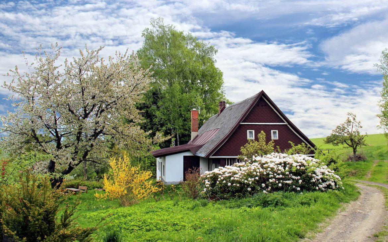 Bahçeli ev dekorasyonu