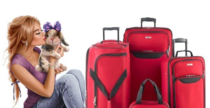 Çok amaçlı seyahat çantaları
